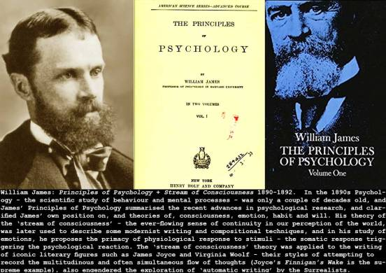 1890_James_Principle-Psychology_c