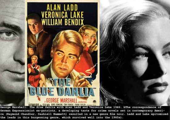 marshall-blue-dahlia_c