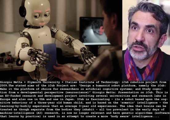 metta-icub-robot-project_c